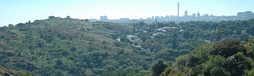 Melville Koppies and Johannesburg skyline